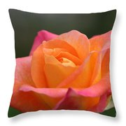 Friday's Find Throw Pillow