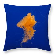 Fried Egg Jelly 2 Throw Pillow