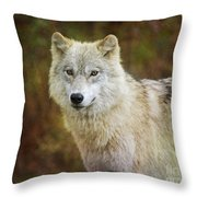 Friendly Beauty.. Throw Pillow