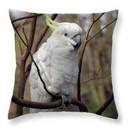 Friendly Cockatoo Throw Pillow