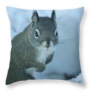 Friendly Squirrel Throw Pillow