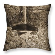 Friends At The Falls Throw Pillow