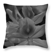 Friends In Nature Throw Pillow