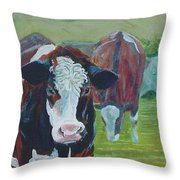 Friesian Holstein Cows Throw Pillow