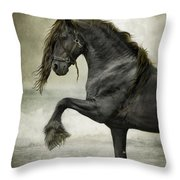 Friesian Surf  Throw Pillow