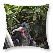 Frigate Bird- Hawaii V2 Throw Pillow