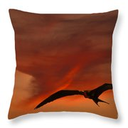 Frigate Bird Throw Pillow