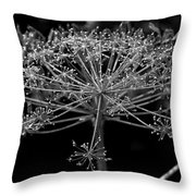 Frills In Black And White Throw Pillow