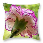 Frilly Carnation Throw Pillow