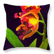 Frilly  Red And Yellow Orchids Throw Pillow