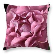 Frilly Rose Throw Pillow
