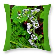 Fringe Cups On Clatsop Loop Trail In Ecola State Park-oregon Throw Pillow
