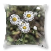 Fringed Daisy Throw Pillow
