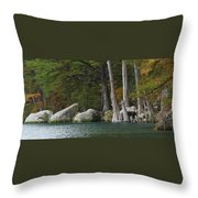 Frio River 2 Throw Pillow