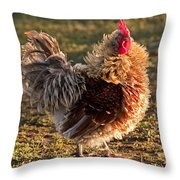 Frizzle Rooster Throw Pillow