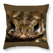 Frog 2 Throw Pillow