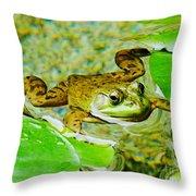 Frog  Abby Aldrich Rockefeller Garden Throw Pillow
