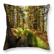 Frog Creek Throw Pillow