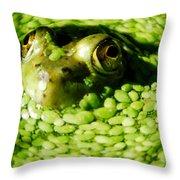 Frog Eye's Throw Pillow