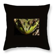 Frog Face Throw Pillow
