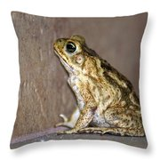 Frog-facing The Wall Throw Pillow by Miguel Hernandez