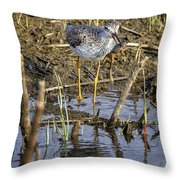Frog For Lunch Throw Pillow