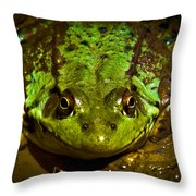 Frog In Mud Throw Pillow