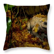 Frog In The Fall Throw Pillow