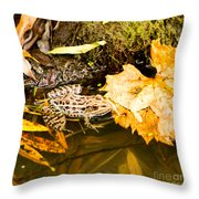 Frog In Water 3 Of 3 Throw Pillow