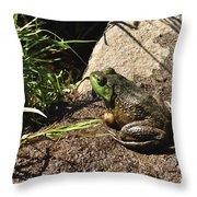 American Bull Frog Throw Pillow