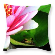Beautiful Life Throw Pillow