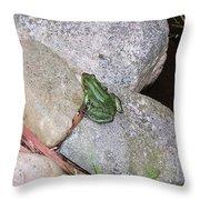 Frog On Rocks Throw Pillow