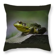 Frog Outcrop Throw Pillow