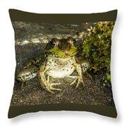 Frog Pose Throw Pillow
