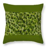 Frog Spawn Throw Pillow