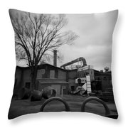 Frog Switch Yard Throw Pillow
