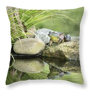 Bull Frog On A Rock Throw Pillow