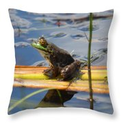 Froggy Reflections Throw Pillow