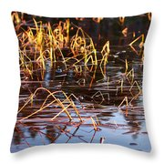 Froggy Sunset Throw Pillow