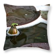 Froggy Throne Throw Pillow