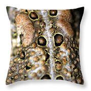 Frogs Back Throw Pillow