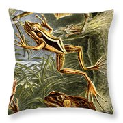Frogs Detail Throw Pillow