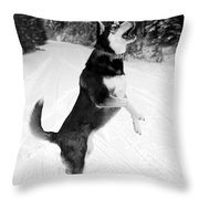 Frolicking In The Snow - Black And White Throw Pillow by Carol Groenen