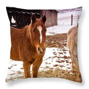 Frolicking In The Snow  Throw Pillow