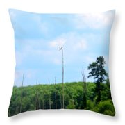 From A Dragonfly's Point Of View Throw Pillow