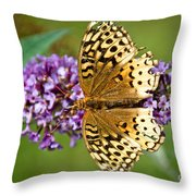 From Above Throw Pillow