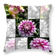 From Bud To Bloom - Dahlia Named Brian Ray Throw Pillow