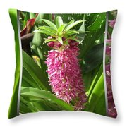 From Bud To Bloom - Eucomis Named Leia Throw Pillow