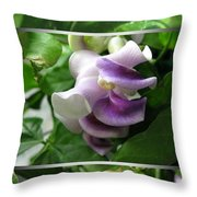 From Bud To Bloom - Phaseolus Caracalla Throw Pillow
