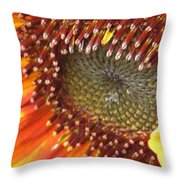 From Bud To Bloom - Sunflower Throw Pillow